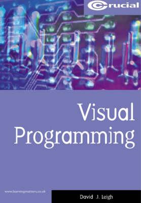 Visual Programming - Computing Study Texts S. (Paperback)