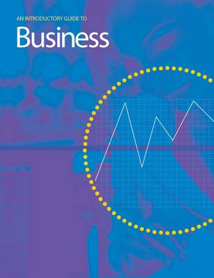 An Introductory Guide to Business - Introductory Guide to (Paperback)