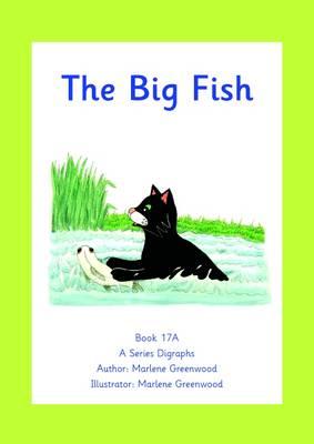 The Big Fish - Reception A Digraphs Series No. 1 (Paperback)