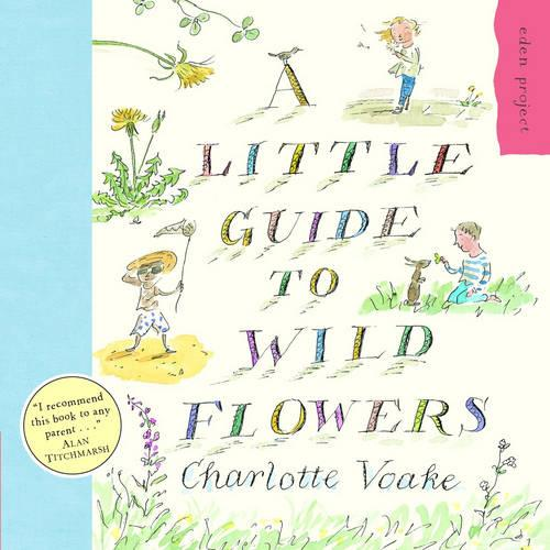 A Little Guide To Wild Flowers (Paperback)