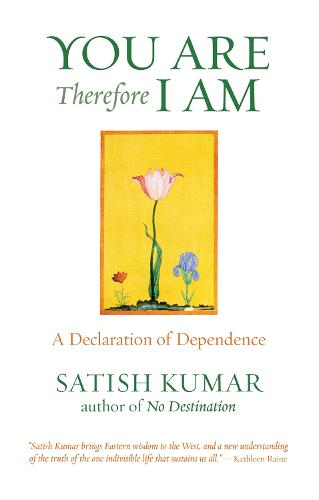 You are Therefore I am: A Declaration of Dependence (Paperback)