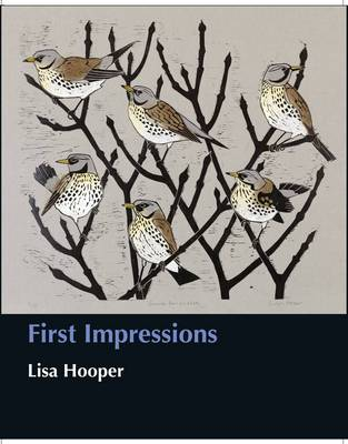 First Impressions - Wildlife Art Series 37 (Hardback)