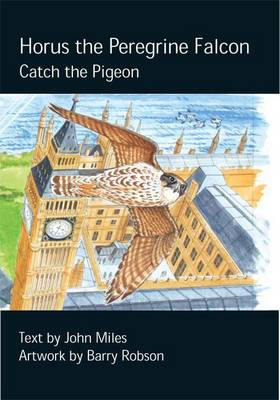 Horus the Peregrine: Catch the Pigeon - Chick Books Myweebooks (Hardback)