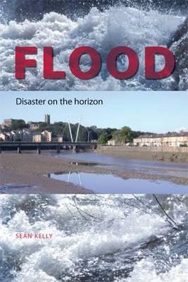 Flood: Disaster on the Horizon (Paperback)