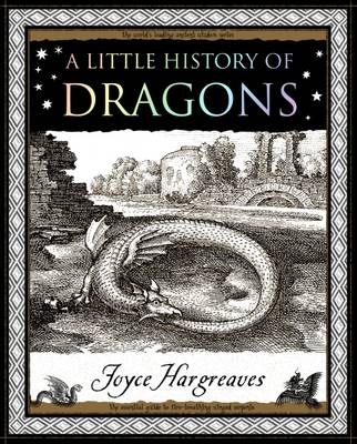 A Little History of Dragons (Paperback)