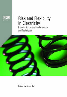Risk and Flexibility in Electricity: Introduction to the Fundamentals and Techniques (Hardback)