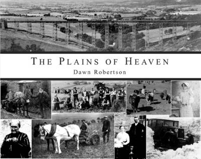 The Plains of Heaven: The Story of Stainmore (Hardback)