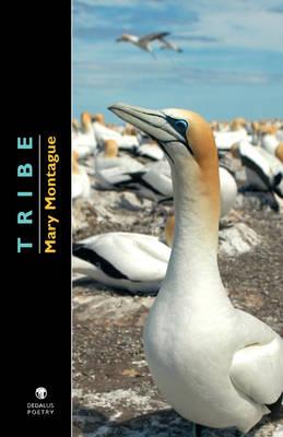 Tribe (Paperback)
