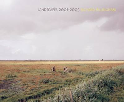 Richard Billingham: Landscapes: 2001-2003 (Hardback)