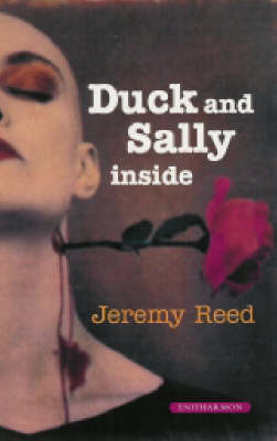 Duck and Sally on the Inside (Paperback)