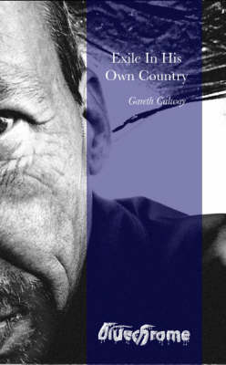 Exile in His Own Country (Paperback)
