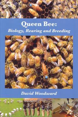 Queen Bee: Biology, Rearing and Breeding (Paperback)