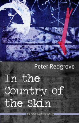 In the Country of the Skin (Paperback)