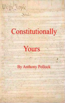 What is a Constitution: A Beginners Guide (Paperback)