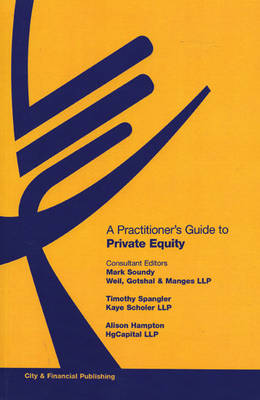 A Practitioner's Guide to Private Equity (Paperback)