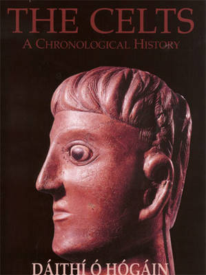 The Celts - a History (Paperback)