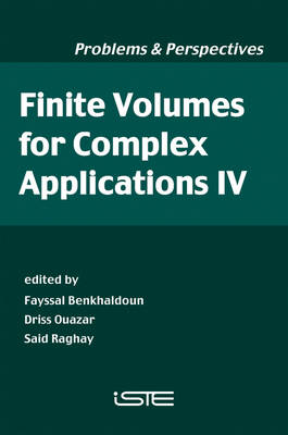 Finite Volumes for Complex Applications IV: Problems and Perspectives (Paperback)