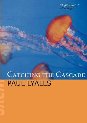 Catching the Cascade (Paperback)