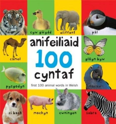 100 Anifeiliaid Cyntaf / First 100 Animal Words in Welsh (Hardback)