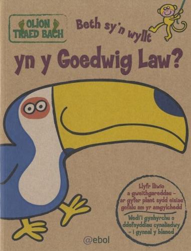 Olion Traed Bach: 4. Beth Sy'n Wyllt yn y Goedwig Law? (Paperback)