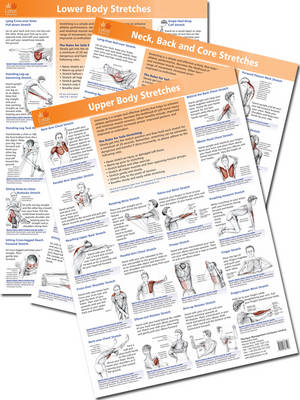 The Anatomy of Stretching Posters (Poster)