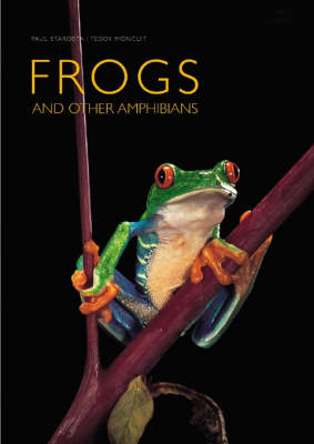 Frogs: and Other Amphibians (Hardback)