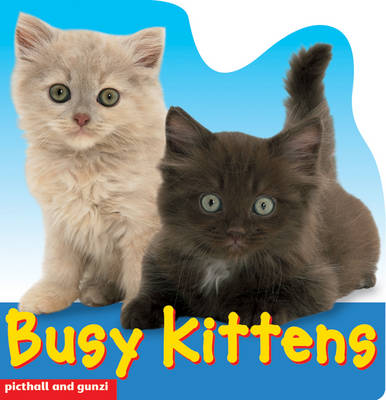 Busy Kittens - Busy Books S. (Hardback)