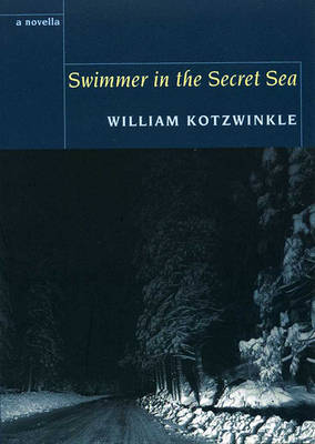 Swimmer in the Secret Sea (Paperback)