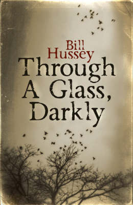 Through a Glass, Darkly (Paperback)
