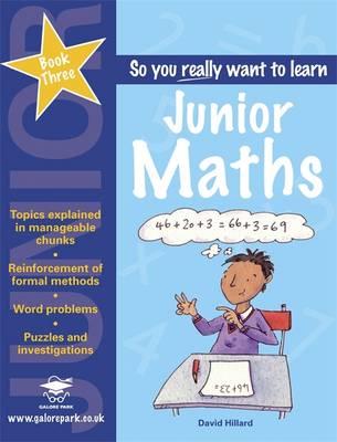 Junior Maths Book 3 (Paperback)