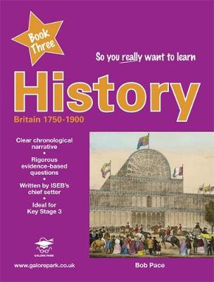 So You Really Want to Learn History Book 3: Book three (Paperback)