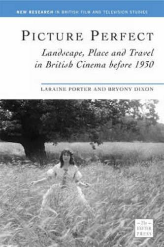 Picture Perfect: Landscape, Place and Travel in British Cinema before 1930 (Paperback)