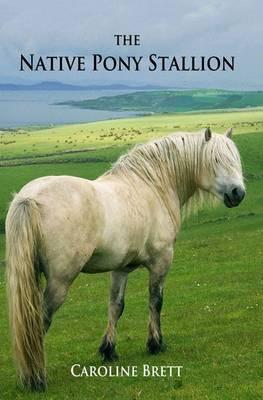 The Native Pony Stallion (Paperback)