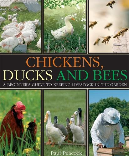 Chickens, Ducks and Bees: A beginner's guide to keeping livestock in the garden (Paperback)