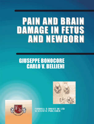 Pain and Brain Damage in Fetus and New Born (Paperback)