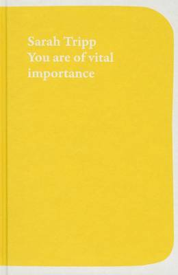 You are of Vital Importance to the Art World (Paperback)
