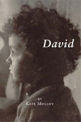 David (Hardback)