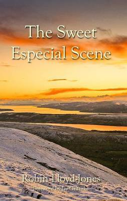 The Sweet Especial Scene (Paperback)