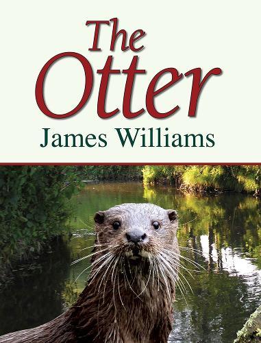 The Otter (Hardback)