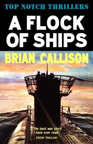 A Flock of Ships (Paperback)