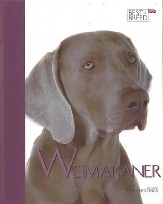 Weimaraner - Best of Breed (Hardback)
