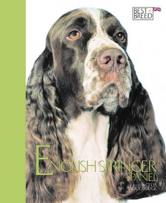 English Springer Spaniel - Best of Breed (Hardback)