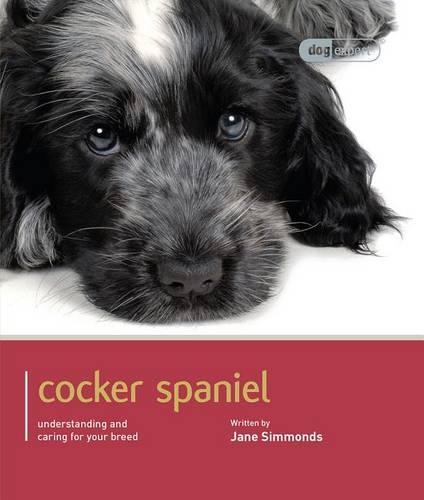 Cocker Spaniel: Cocker Spaniel - Dog Expert (Paperback)