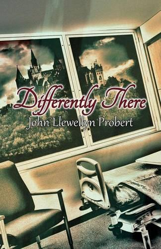 Differently There (Paperback)