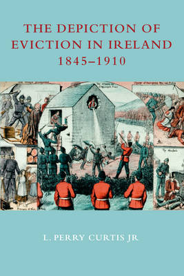 The Depiction of Eviction in Ireland 1845-1910 (Hardback)