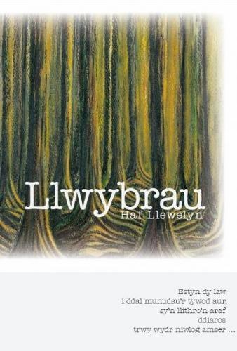 Llwybrau (Paperback)