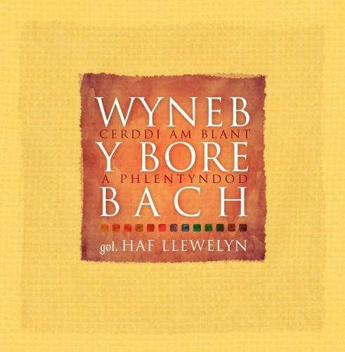 Wyneb y Bore Bach - Cerddi am Blant a Phlentyndod (Hardback)