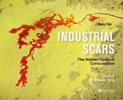 Industrial Scars: The Hidden Cost of Consumption (Hardback)