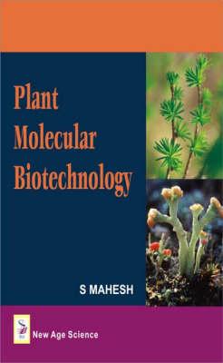 Plant Molecular Biotechnology (Hardback)