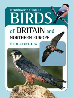 Identification Guide to Birds of Britain and Northern Europe (Paperback)